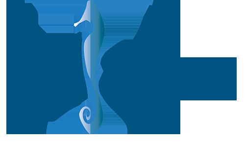 udjama-logo-grand