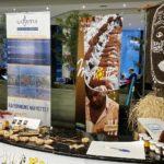 exposition d'artisanat mahorais
