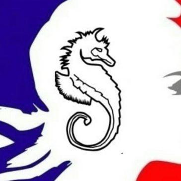 Pétition : il faut sauver Mayotte !